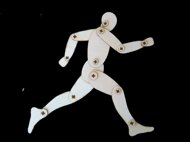 Mācību līdzeklis paredzēts izmantošanai vizuālās mākslas stundās (nodarbībās), cilvēka ķermeņa, tā dažādu kustību zīmēšanas apgūšanai.
