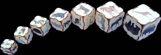 Septiņu augoša izmēra kluču komplekts. Uz katra kluča sešām skaldnēm ir  uzzīmēti seši dažādi dabiska izskata dzīvnieki, kuru reālais izmērs ir proporcionāli  atbilstošs atbilstošā kluča izmēram (zilonis – uz lielākā izmēra kluča un bite – uz mazākā klucīša). Katram klucim, to pakratot ir dzirdama kluča izmēram atbilstoša augstuma skaņa.