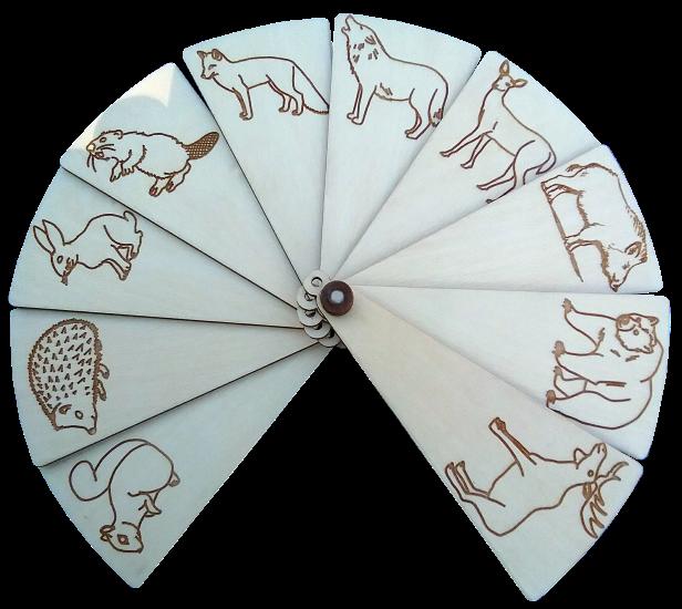 Vēdeklis ar 10 Latvijā dzīvojošiem tradicionāliem savvaļas dzīvniekiem. Piemērots daudz un dažādām attīstošām nodarbēm pirmsskolas vecuma bērniem. Vēdekļa formāts ļauj radoši un interesanti darboties izmantojot salīdzinoši lielu informācijas daudzumu un to turot vienā vai abās rokās. Nav jāizmanto daudz  dažādas atsevišķas kartiņas vai attēli. Bīdot vēdekļa sadaļas attiecībā vienu pret otru var veidot neskaitāmi daudz un dažādas attēlu kombinācijas.  Iespējamās aktivitātes:  1. Sakārtot desmit dzīvniekus noteiktā secībā, piemēram, pēc augoša vai dilstoša izmēra. 2.Pēc vecāku vai pedagogu diktētiem uzdevumiem, piemēram, kurš ēd zāli, kurš ķer un pārtiek no  citām dzīvām radībām, kurš dzīvo kokos utt. Sagrupēt dzīvniekus pēc to attiecībām dabā,  piemēram, lapsa ķer zaķi, vilks ķer lapsu utt. 3. Parādīt dzīvnieku, kura nosaukums sākas ar kādu noteiktu skaņu- c,g vai parādīt dzīvniekus, kuru nosaukumā ir vien vai vairākas skaņas, piemēram, a. Parādīt dzīvniekus, kuru nosaukums sastāv no noteikta skaita burtiem, piemēram, četri vai pieci utt.  4. Izdomāt katram dzīvniekam vārdu un pastāstīt par viņu, piemēram, ko dzīvnieks ēd, kur dzīvo utt.